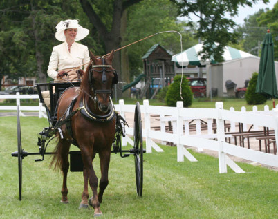 columbus_carriage_festival