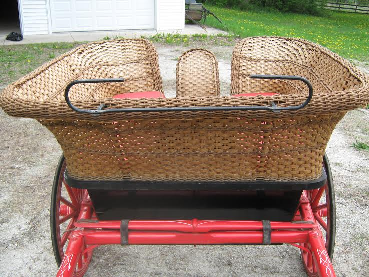 Governess Cart Pic 4