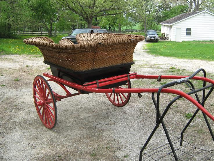 Governess Cart Pic 5